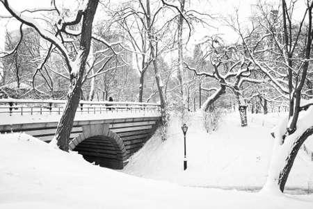 freshly fallen snow: Neve Una vista in bianco e nero di Central Park a Manhattan dopo appena caduta