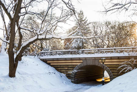 A snowy bridge and tunnel in Central Park in New York City