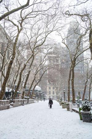 janus: NEW YORK-JANUARY 21  A quiet stroll through Bryant Park during Winter Storm Janus on January 21, 2014 in Manhattan  Editorial