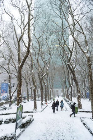 janus: NEW YORK-JANUARY 21  A snow filled view of Bryant Park during Winter Storm Janus on January 21, 2014 in Manhattan  Editorial