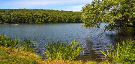 lake  pond  trees: A panoramic view of a lake in Mine Hill New Jersey