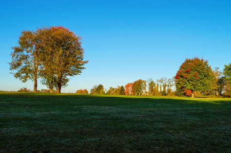 A field in Millstone New Jersey covered in shade  photo