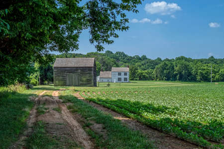 A dirt road leads to this old homestead in Monmouth Battlefield State Park in Freehold NJ. Stock Photo
