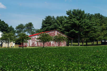 old red barn: An old red barn and green field in rural Central New Jersey. Editorial