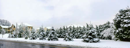 freshly fallen snow: A panoramic view of a neighborood in Manalapan New Jersey after freshly fallen snow. Stock Photo