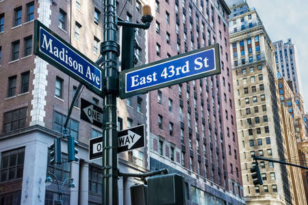 ave: A Madison Ave street sign with New York City buildings in the background.