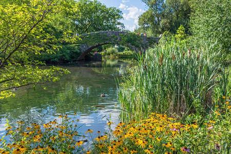 A Summer pondside garden in Central Park near the stone bridge. Archivio Fotografico