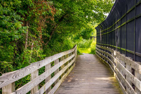 bridge in nature: A nature trail with a wooden bridge in Mercer County NJ.