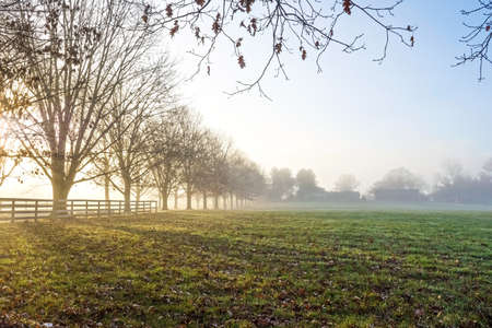 fog: Early morning fog over this rural farm scene in Central New Jersey. Stock Photo