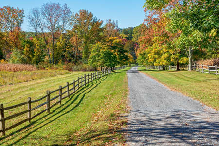 fall landscape: A gravel road passes though Fall foliage in rural Morris County New Jersey.