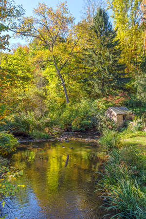 state park: A snall pond in early Autumn in Allaire State Park in New Jersey.