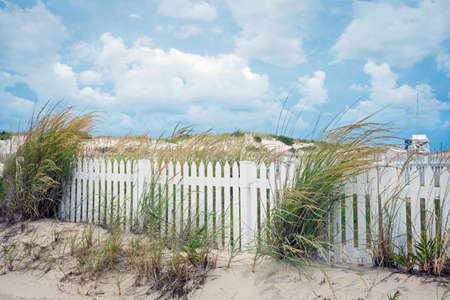 picket: A white picket fence along the sand dunes in Seaside Park New Jersey.