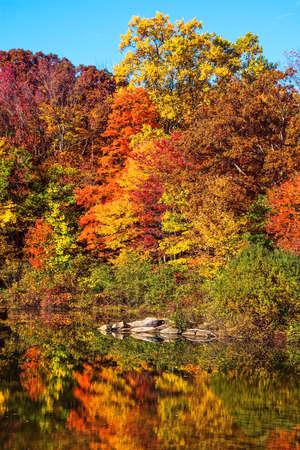Brilliant Herbstfarben reflektieren Lake George in Schooly Mountain Park in Morris Grafschaft-NJ.