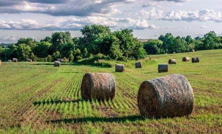 surrealistic: A surrealistic look at bales of hay on this field in rural Central New Jersey. Stock Photo