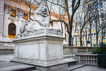 One of the two lions Patience and Fortitude outside the NYC Public Library since 1911.