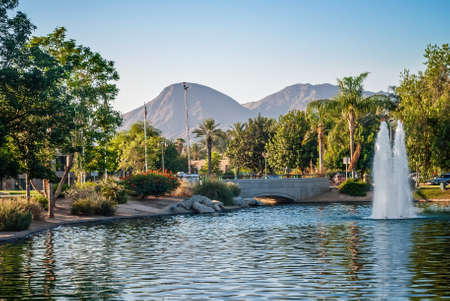 A scenic municipal park in sunny Palm Springs California.