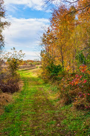 A trail leads through this Autumn meadow in rural Central New Jersey.