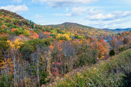 autumn colour: Scenic Harriman State Park in New York during the Fall.