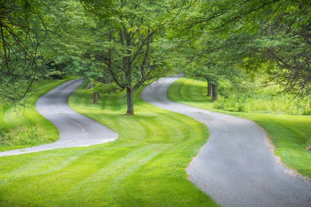 2 way: Two winding roads with green grass and Summer trees.