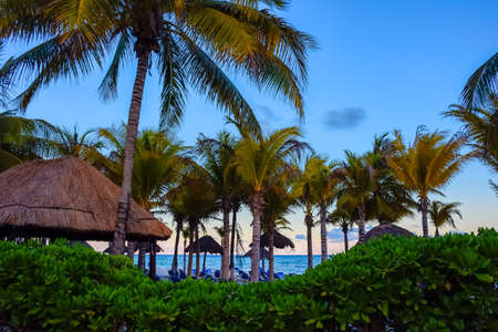 Palm trees and tropical huts at dusk in Playa del Carmen Mexico. Stock Photo