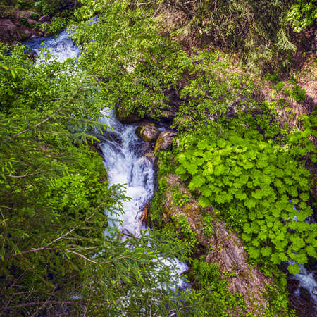 Late Spring green foliage and cascading waterfalls of Turnagain Arm near Anchorage Alaska.