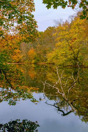 A scenic Autumn look at this small pond in Freneau Woods Park in Aberdeen New Jersey.