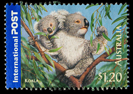 AUSTRALIA - CIRCA 2006  An Australian Used Postage Stamp showing Koala Bear, circa 2006 Editorial