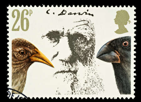 UNITED KINGDOM - CIRCA 1981  A British Used Postage Stamp Showing Charles Darwin and Finches, circa 1981