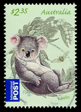 AUSTRALIA - CIRCA 2011: An Australian Used Postage Stamp showing Koala Bear, circa 2011