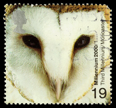 UNITED KINGDOM - CIRCA 2000: A used postage stamp printed in Britain showing a Barn Owl