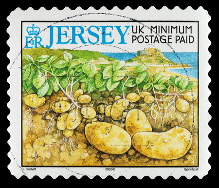 JERSEY, CHANNEL ISLANDS - CIRCA 2003: A Used Postage Stamp showing Jersey New Potatoes