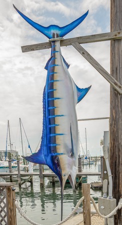 Blue Marlin Sailfish Replica Hanging in Marina at Key West, Florida