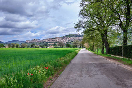 View of Assisi old city, Umbria, Italy photo