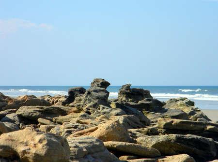 coquina: Coquina rocks lining a Florida beach.