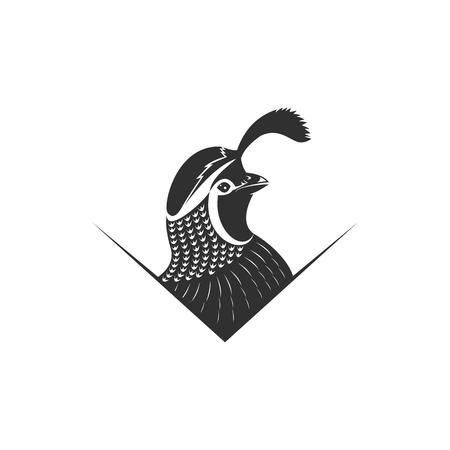 illustration vectorielle de caille pour votre entreprise ou votre marque Vecteurs