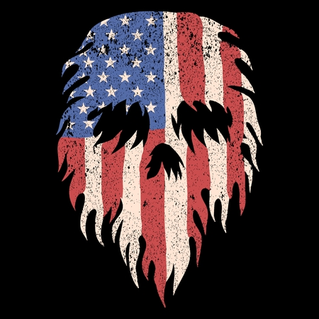 skull usa torn flag vector illustration