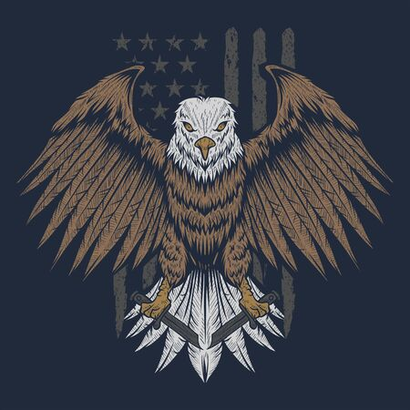 eagle usa flag vector illustration for your company or brand Illustration