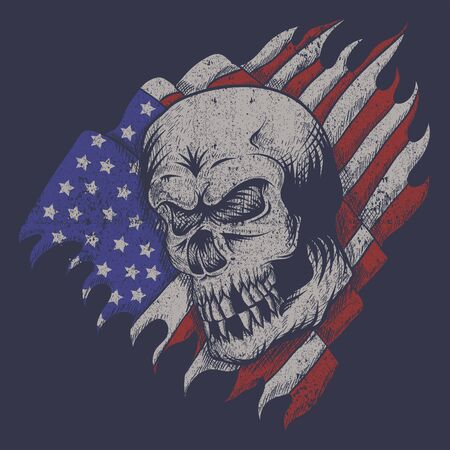 skull usa flag vector illustration for your company or brand