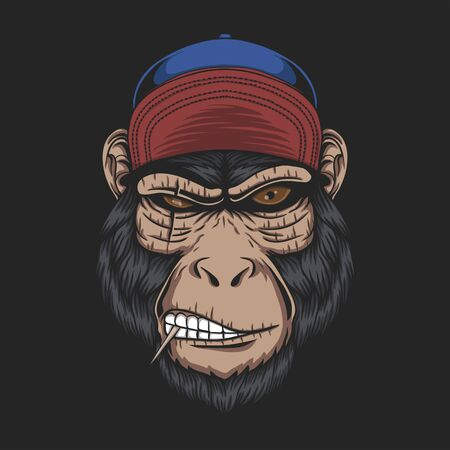 Monkey head cap vector illustration for your company or brand