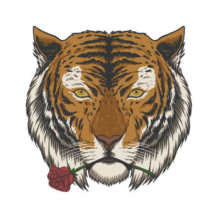 Tiger biting rose vector illustration for your company or brand