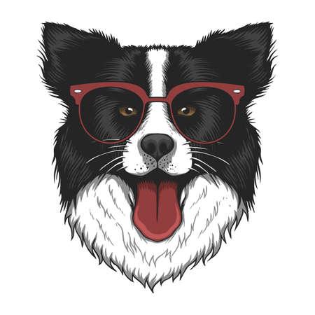 Border collie dog eyeglasses vector illustration for your company or brand 向量圖像