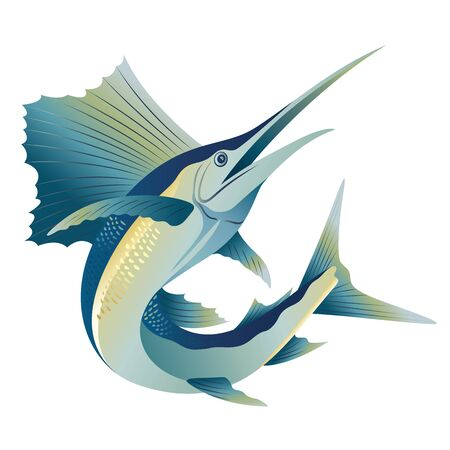 jump blue marlin sword sail fish illustration