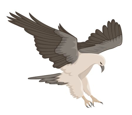 white eagle flying vector illustration Stock Illustratie