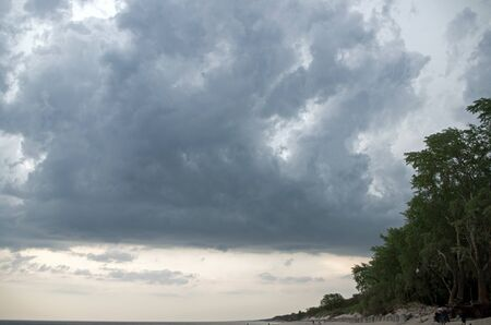 The coast of the restless dark blue sea and the trees on the sandy slope stretching into the horizon against the background of a pre thunderous gloomy sky with dark large heavy clouds