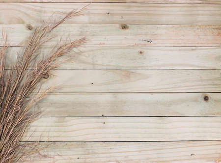 wood grass: Rustic horisontal wooden sltat wall with saw grass edging.