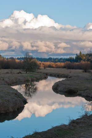 meandering: Meandering stream with cloud reflections.