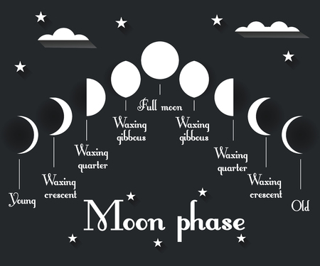 penumbra: The phases of the moon. Vector illustration. Illustration