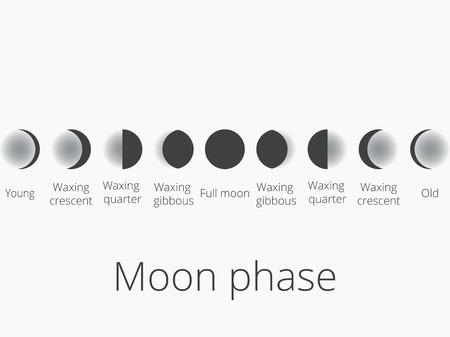 Las fases de la luna. Todo el ciclo de luna nueva en su totalidad. Ilustración del vector.