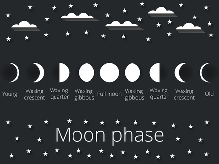 moon and stars: The phases of the moon. Vector illustration. Illustration