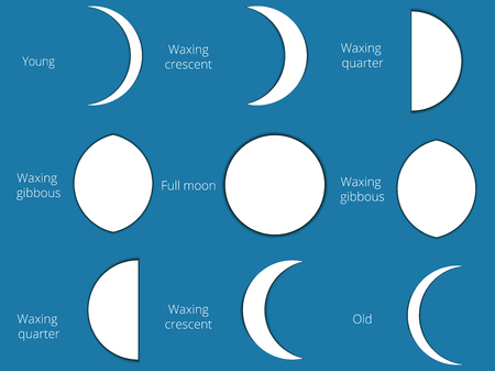 waxing: The phases of the moon. The whole cycle from new moon to full. Vector illustration. Illustration